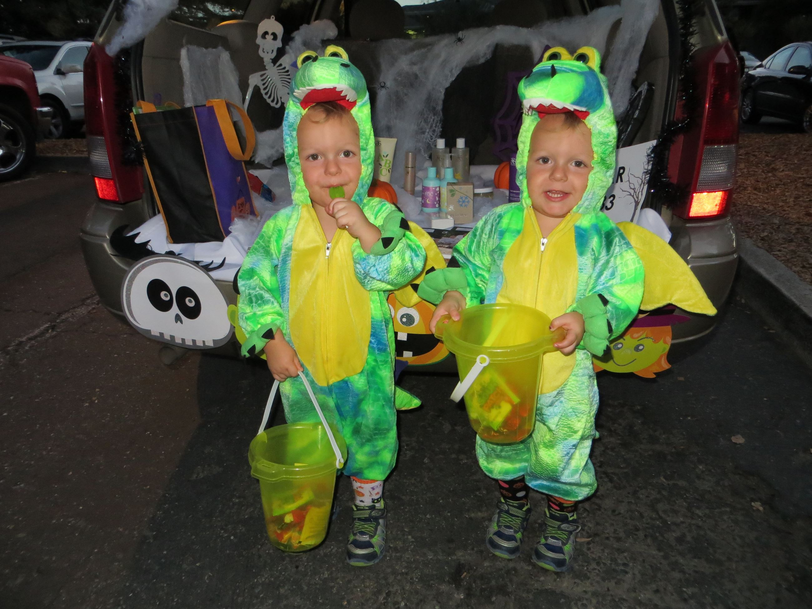 Twin Young Boys in Dragon Costumes