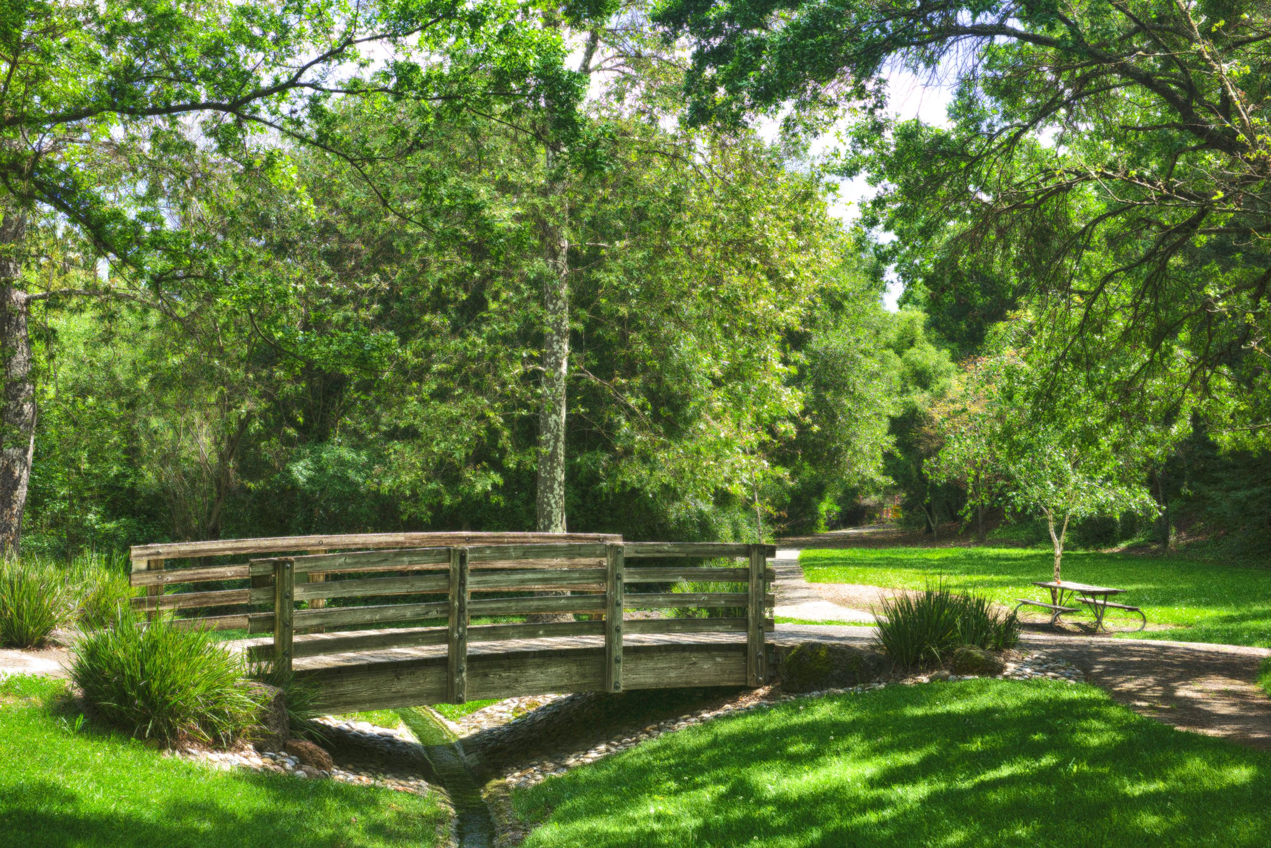 Small arched bridge in lush green neighborhood park