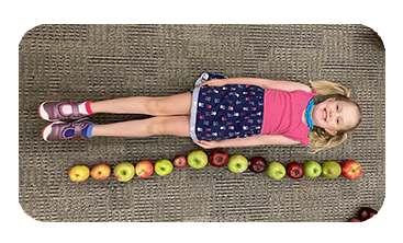 Girl Measured With Apples