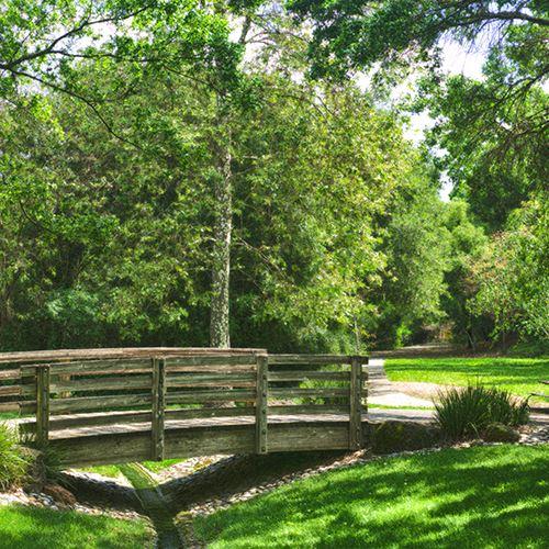 Dog Park Pleasant Hill Ca